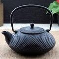 Free shipping hot sale new style cast iron teapot, good quality 300ml / 0.3l  Pot Japanese Iron Teapot Kongfu Tea Pot
