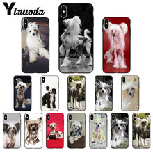 Yinuoda Dog of breed Chinese crested Soft black Phone Case for Apple iPhone 8 7 6 6S Plus X XS MAX 5 5S SE XR 11 11pro 11promax(China)