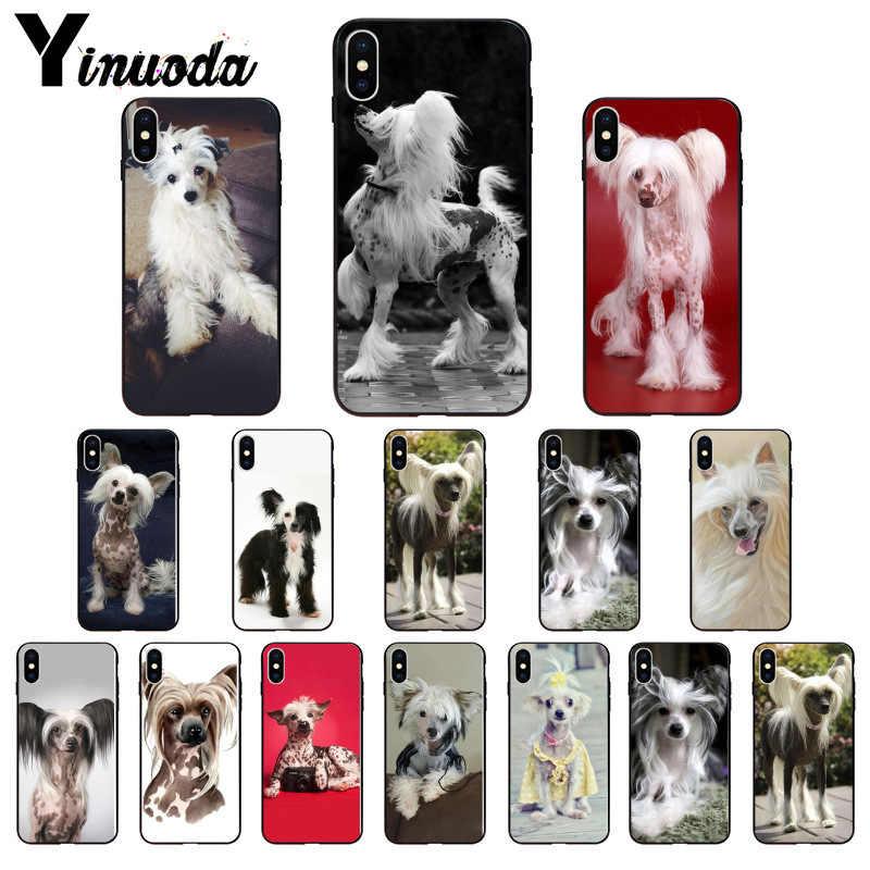 Yinuoda cão de raça chinês crested macio preto caso de telefone para apple iphone 8 7 6 s plus x xs max 5 5S se xr 11 11pro 11promax