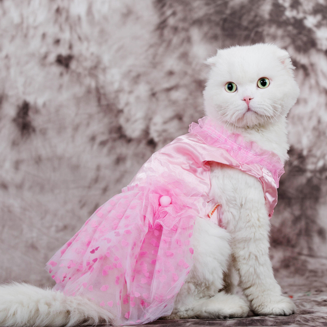 High Quality Kitten Sundress Dress Cat Princess Wedding Pet Clothes S Spring And