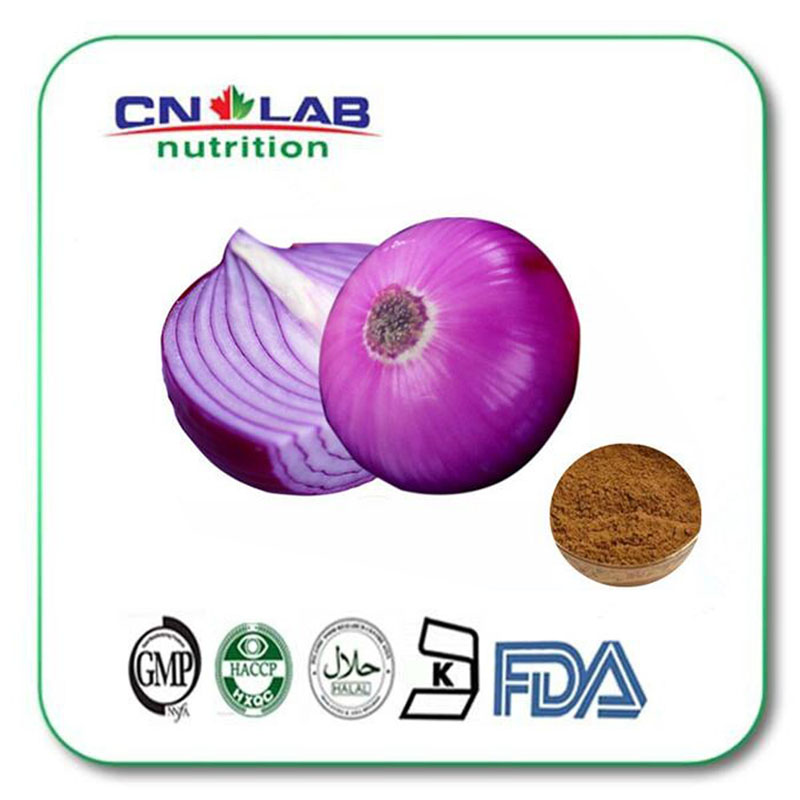 NATURE Onion extract powder 10:1 from GMP KOSHER factory 1000g/lot 1000g 10 1 hairyvein agrimony extract