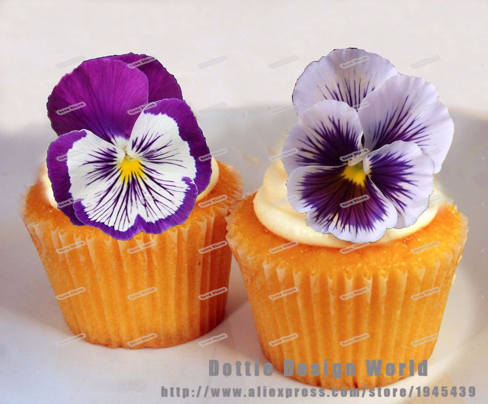 24 Purple White Pansy Flower Edible Cake Topper Wafer Rice Paper