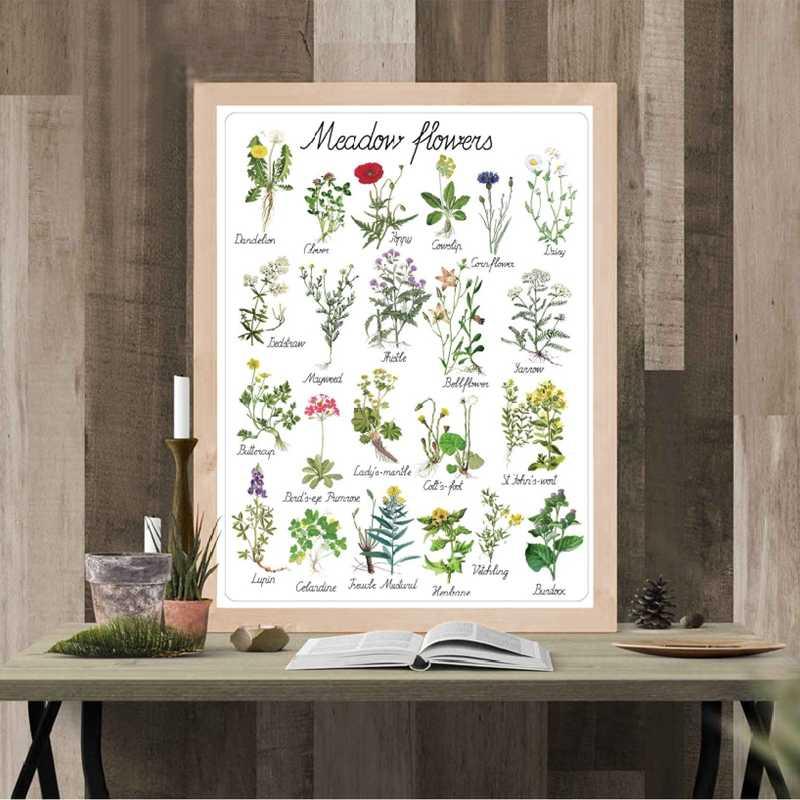 Монтессори цветы искусство холст живопись учебный плакат ботанический детский сад стены искусства картины печать детская комната декор стен