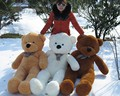 200cm Big size Teddy Bear Skin coat  toys ( un-stuffed) dolls for baby birthday gifts (3 colors), Free Shipping!