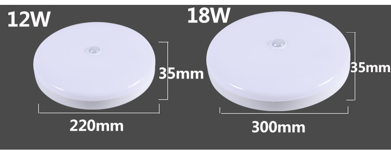 Smart PIR Motion Sensor LED Ceiling Lights 12W 18W 220V Led Ceiling Lamp Light for Home Hallway Stairway Garage Porch Laundry