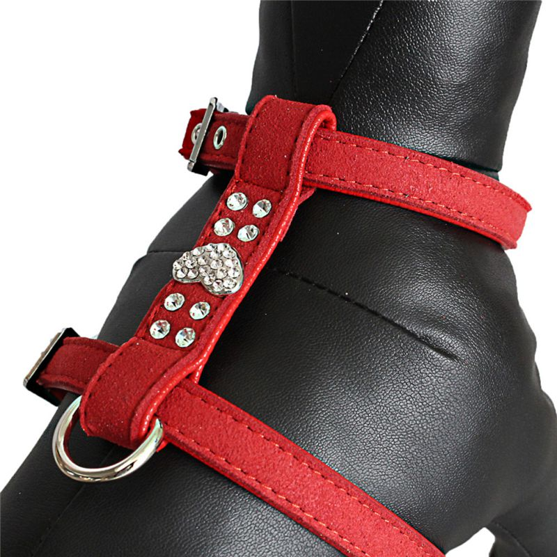 cute puppy harness