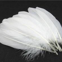 White Large 50pcs Beautiful Hot-Sell High-Quality 15-22cm/5.91''-8.66''