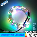 10M 100 LED Outdoor Christmas Fairy Lights silver Copper Wire LED String Lights Starry Light+Power Adapter(UK,US,EU,AU Plug)