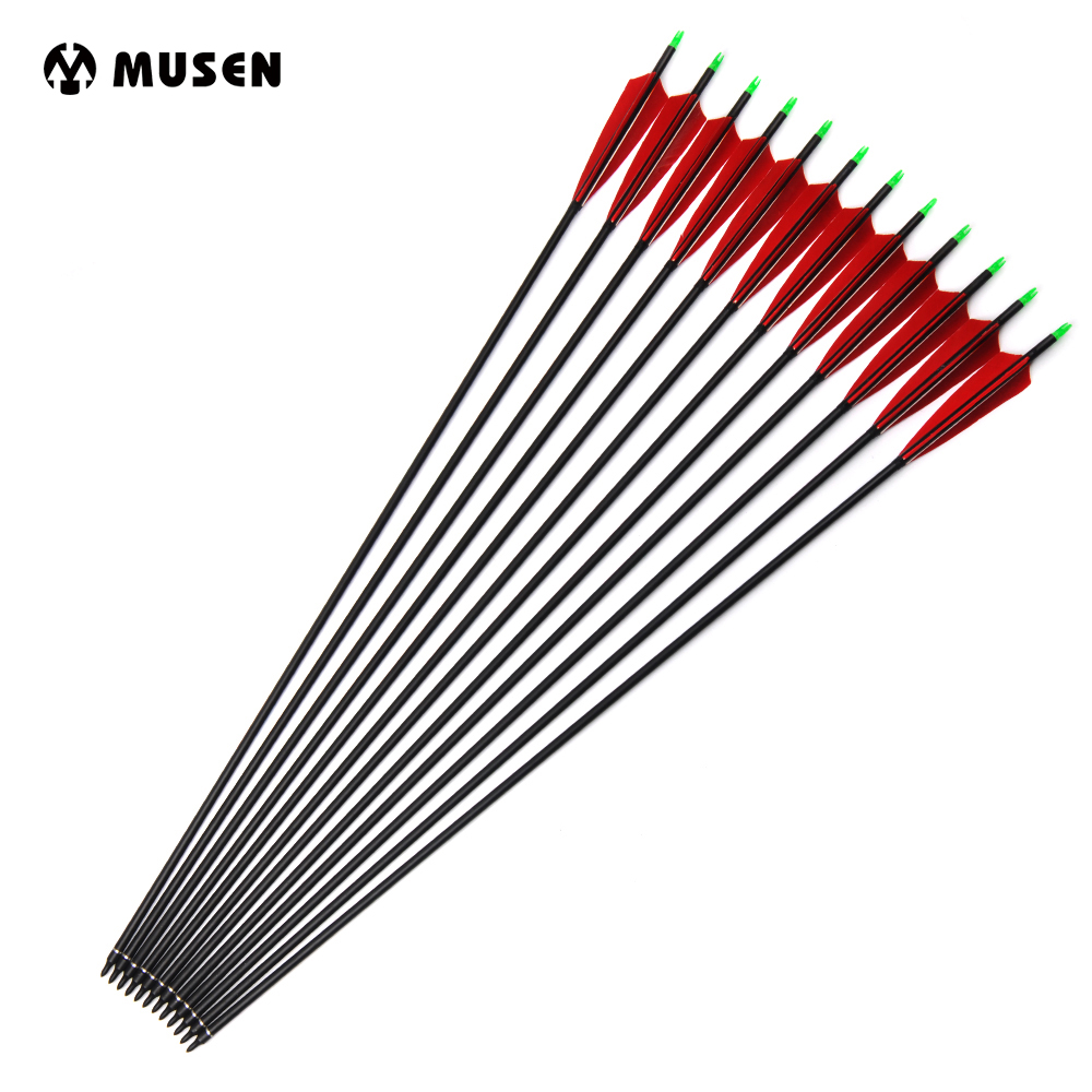 Spine 500 Carbon Arrows 85cm with Turkey Feather and Replaceable Tips for Recurve Compound Bow Hunting Shooting Archery