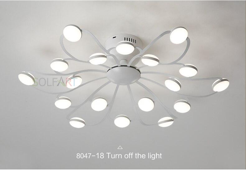 8047-LED Ceiling Light Sconce Luminaria Chandelier Ceiling Avize Light Fixtures Ceiling Lamp_12