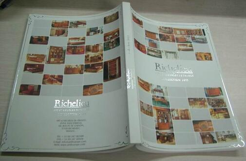 one catalogue /magazine sample printing with free shipping
