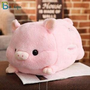 Image 5 - 1 adet 50cm yumuşak Kawaii aşk domuz peluş yastık dolması sevimli hayvan yastık el ısıtıcı çin zodyak domuz oyuncak bebek doğum günü hediyesi çocuk