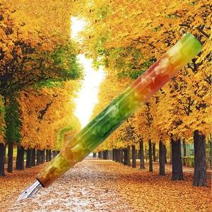 Image 3 - Wanwu Mini pluma de inmersión de vidrio y pluma estilográfica Aurora, creativa, celuloide, EF/F/Pequeño plumín curvo, pluma de tinta colorida y juego de regalo
