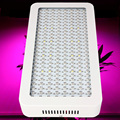 1pcs High Power 1200W 200leds 900W Full Spectrum Led Grow Light for Green House Grow Tent Hydroponics System Flowering Plant