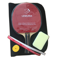 Lemuria arbon fiber table tennis racket with double face pimples in rubber heavy tip light handle offensive ping pong paddle