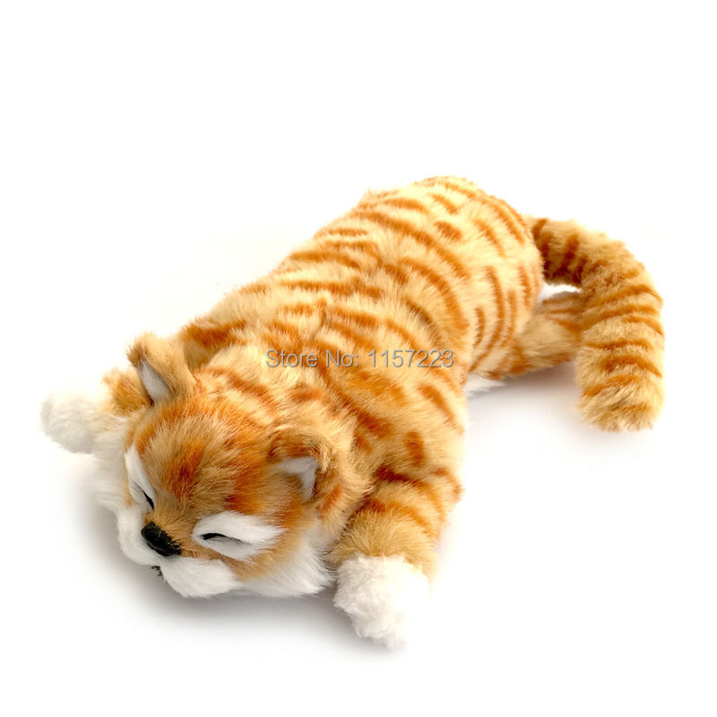 Online get cheap robot cats alibaba group for Swimming fish cat toy