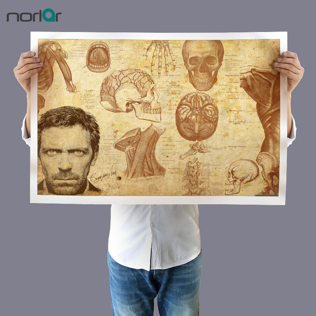 Dr. Gregory House Anatomy Drawings Wall Art Picture Canvas Painting ...