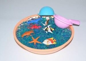 Image 4 - 20pcs צעצועי 20000 פיינטבול קריסטל מים כדור סימולציה ימי חיים פיינטבול כדור DIY גינון צמח קישוט בלוני מים