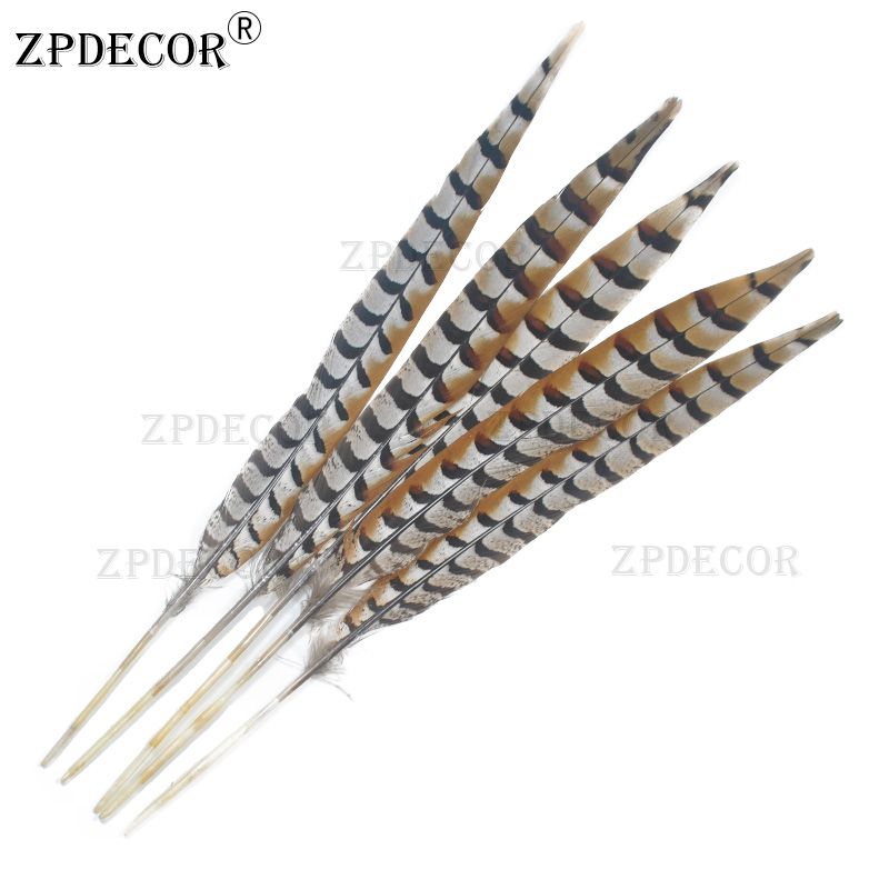 40-50 CM 16-20 Inch Mreeves Venery Pheasant Tail Feathers Natural color40-50 CM 16-20 Inch Mreeves Venery Pheasant Tail Feathers Natural color