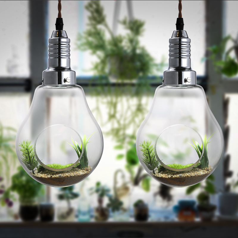 plant vase plants restaurant American Creative glass bulb  decoration lighting lamp Pendant Lights personality resurrection plants hydrophile jericho rose plant