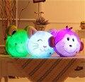 1 UNID Glowing Luminoso Led Light up Juguetes Mono Rana Gato de Peluche de Juguete de Felpa Muñeca Cojín Almohada de Regalo de Cumpleaños