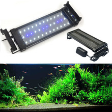 6W Blue White Light Can stretch bracket LED Aquarium light 110 240V
