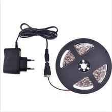 Tira de luces LED 5m 60LEDs/m Color único 3528SMD cinta LED Flexible 12V fuente de alimentación 2A, blanco cálido, blanco, rojo, azul, verde, amarillo