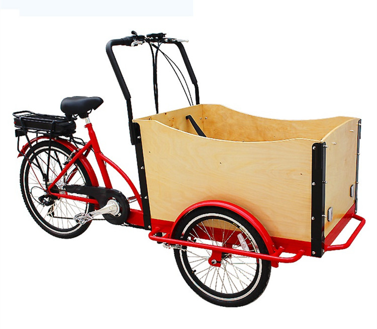 3-wheels-electric-cargo-bike-with-CE (3)_