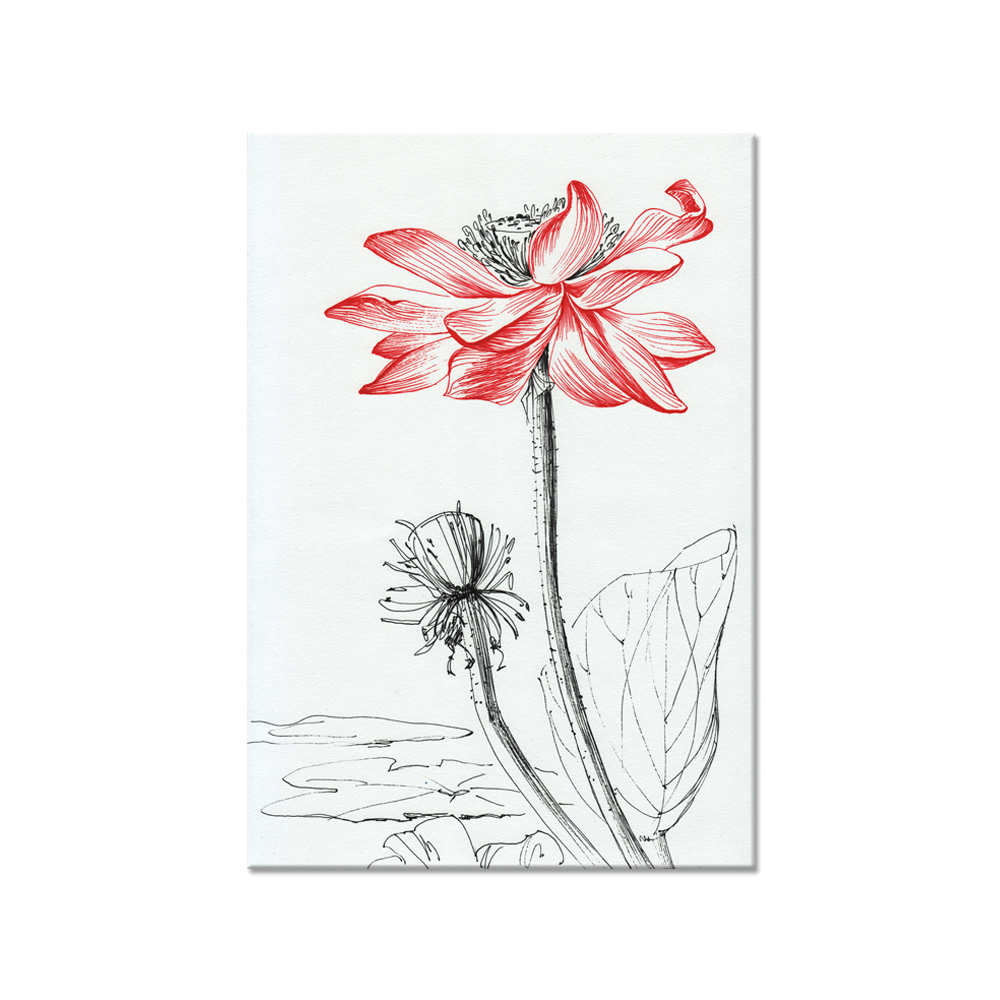 Aliexpress buy traditional chinese sketch lotus flower canvas aliexpress buy traditional chinese sketch lotus flower canvas painting high quality canvas art for home decoration is free shippping sjm1608025 from mightylinksfo
