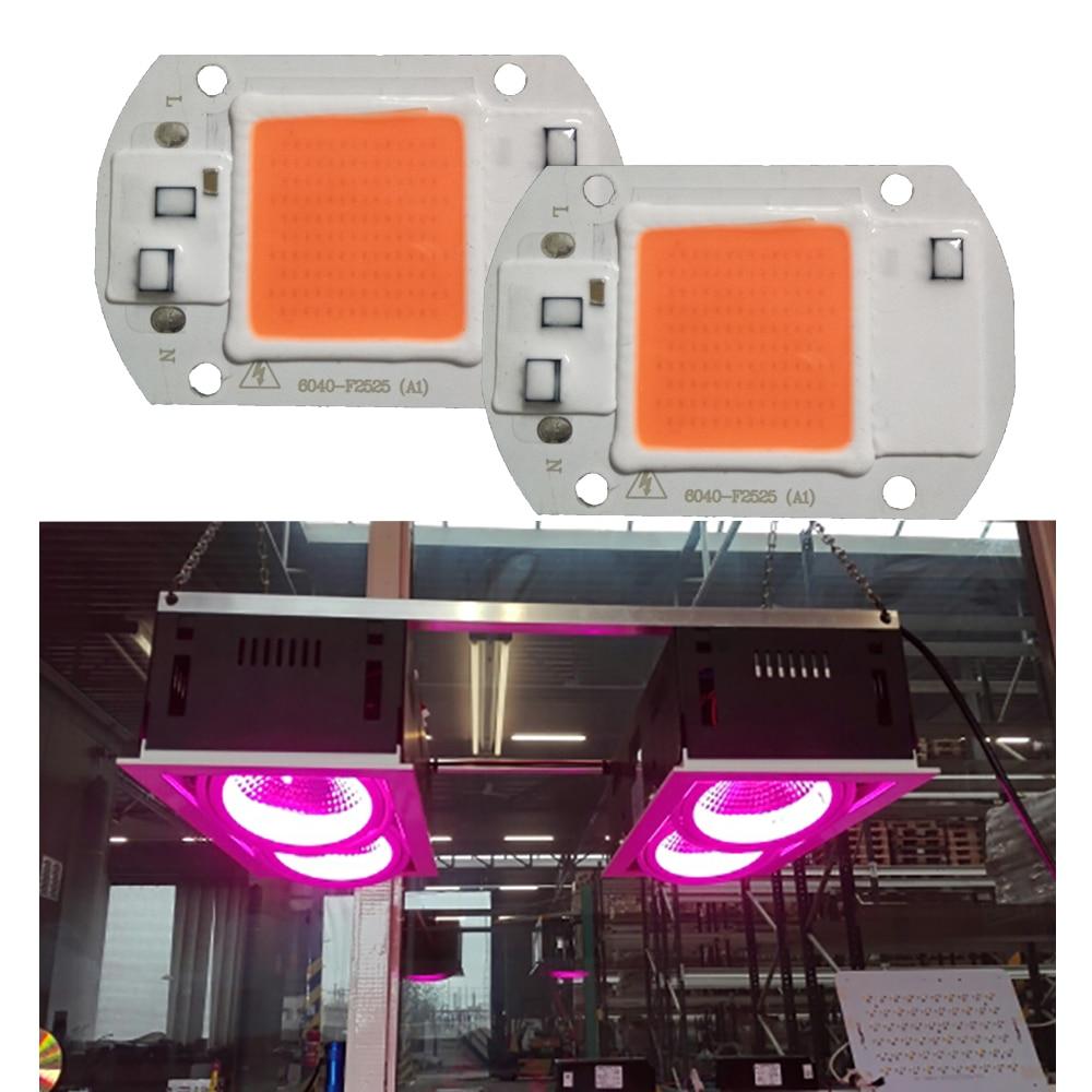 Levou Crescer Luzes 220 v 110 v Mode : Cob Led Chip Lamp