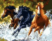 """DIY Painting By Number – Runner Horse (16""""x20"""" / 40x50cm)"""