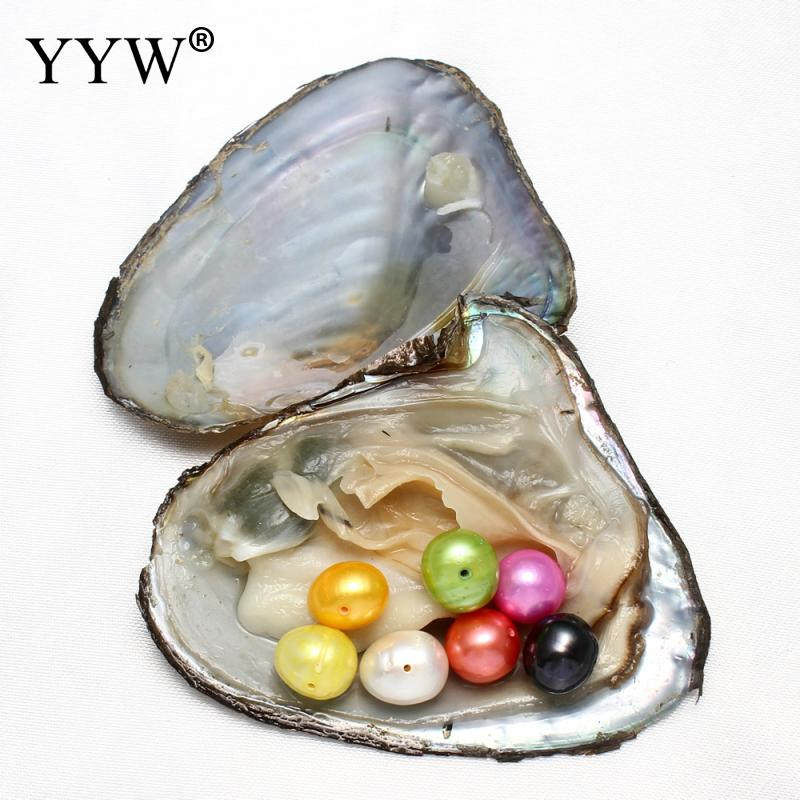 9-10mm Freshwater Vacuum-pack Oyster Pearls Mussel Shell with Pearl Inside Pearl Mysterious Surprise Dyed Beads Jewelry Making
