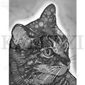 Прекрасный Кот Кристалл рукоделие полный квадратный/бриллиант Вышивка Картины мозаичный Декор - фото