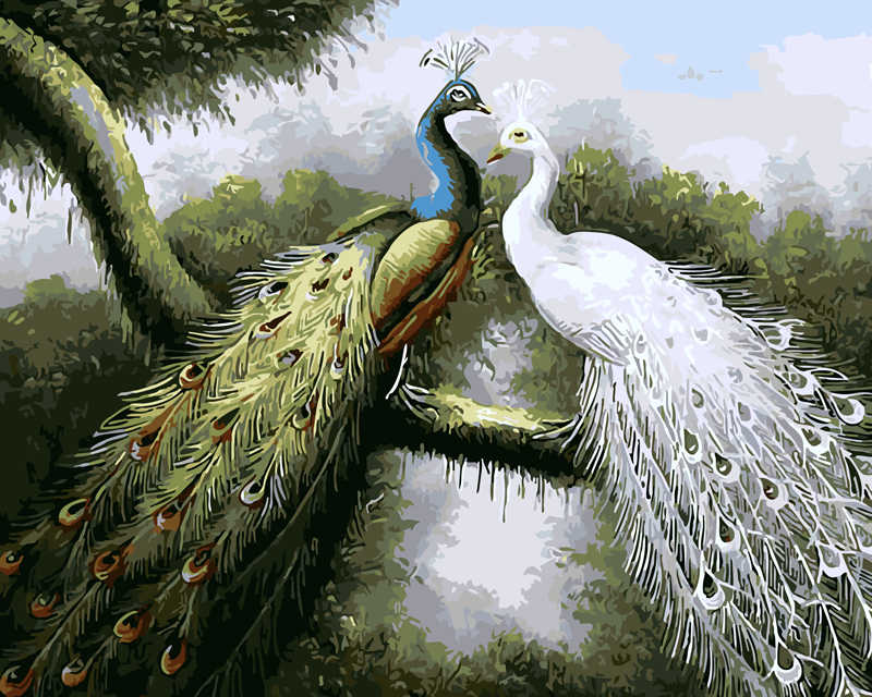 Frameless Animal Peacocks DIY Painting By Numbers Kits Coloring Oil Painting On Canvas Drawing Home Artwork Wall Art Picture