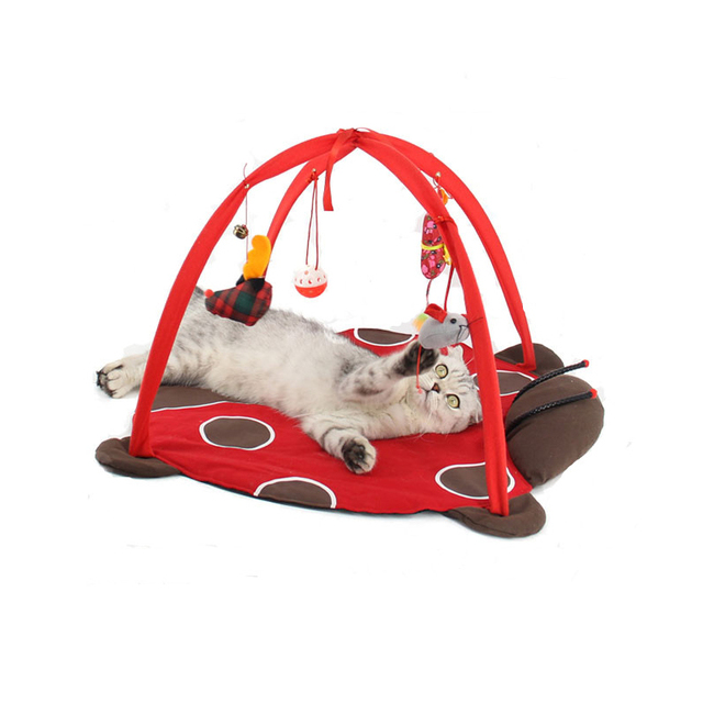 Aliexpresscom Acquista Portable Pet Giocare Tenda Giochi Per