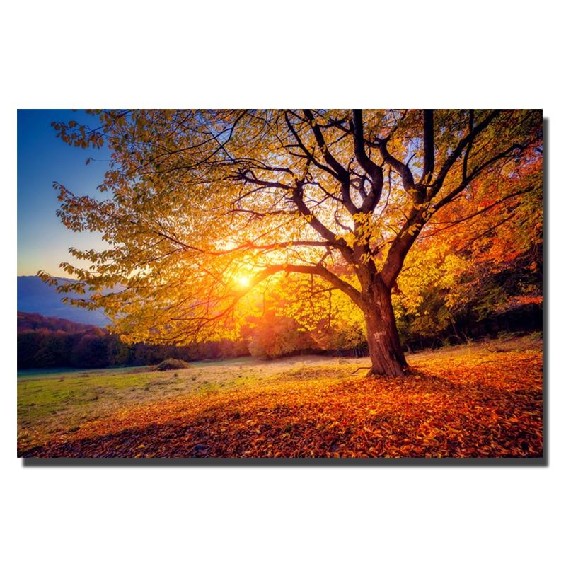 Beautiful Nature Image: Aliexpress.com : Buy HD Print Large Size Sunset Beautiful