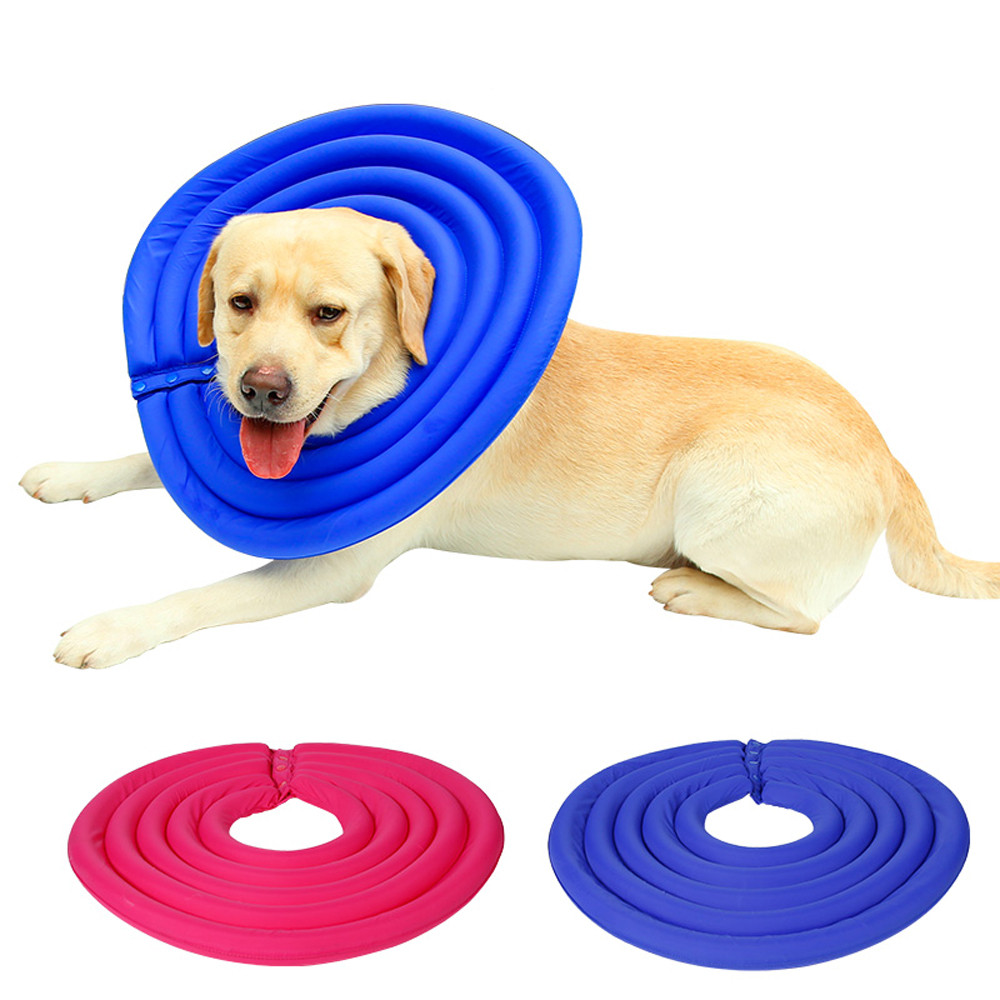 Healing Collars For Dogs
