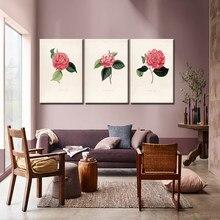 Unduh 540 Koleksi Wallpaper Bunga Camelia Foto HD Gratid