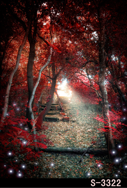 Сказочный лес Живописный фон для фотосъемки деревья красочные ... | 377x255