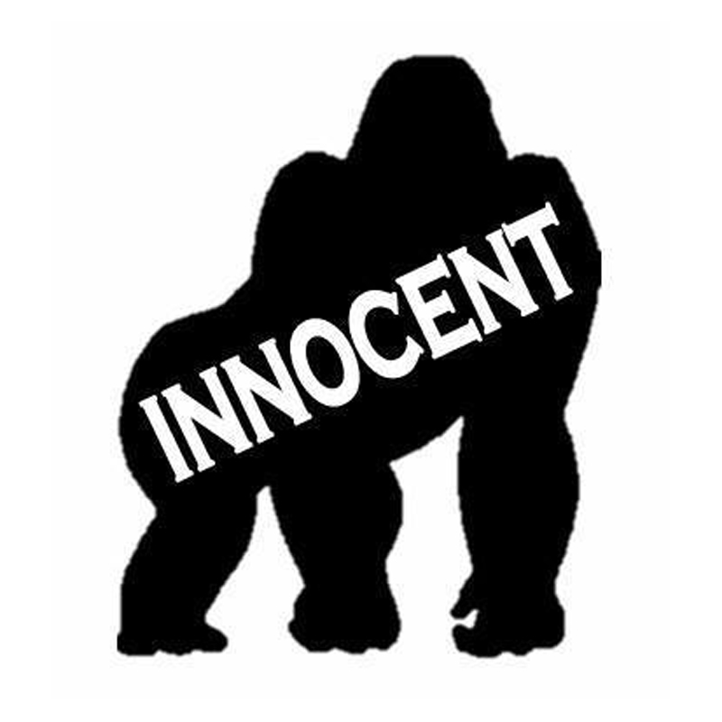 12 Cm 147 Cm Gorilla Innocent Harambe Tier Aufkleber Aufkleber Auto Styling S4 0145