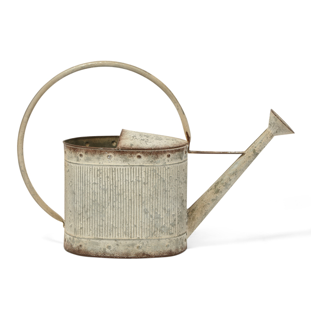 Metal, Chic Industrial Oval Watering Can, Galvanized Gray