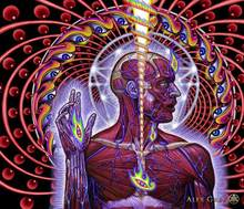 "poster 28x24"" 16x13"" Trippy Alex Grey Wall Poster Print Home Decor Wall Stickers poster Decal--027(China)"