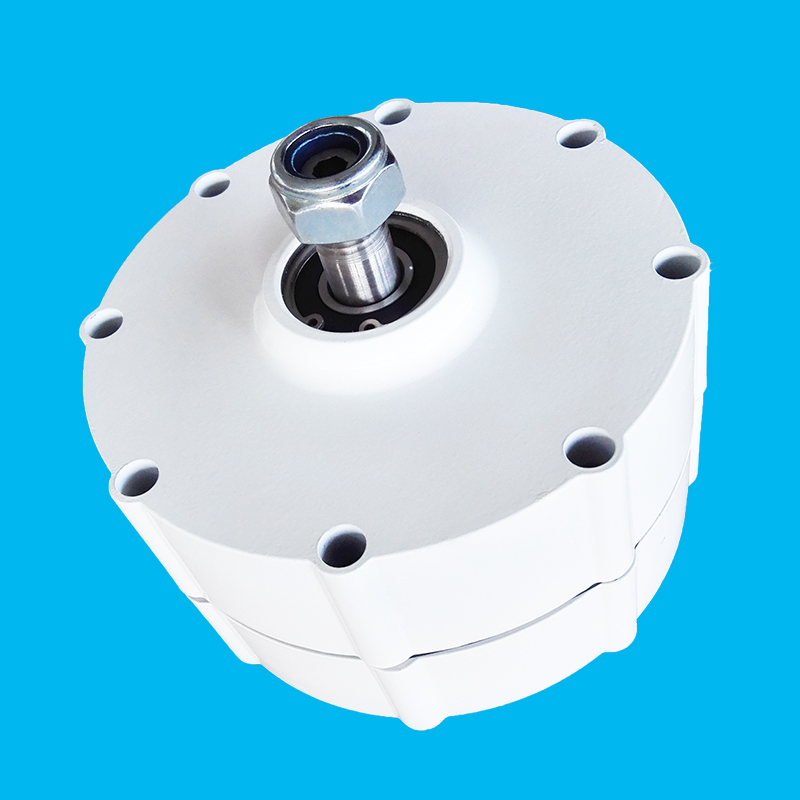 Nouveauté 500 W AC24V/12 V bas RPM 600 W alternateur à aimant PERMANENT pour la fabrication de générateurs d'éoliennes bricolage