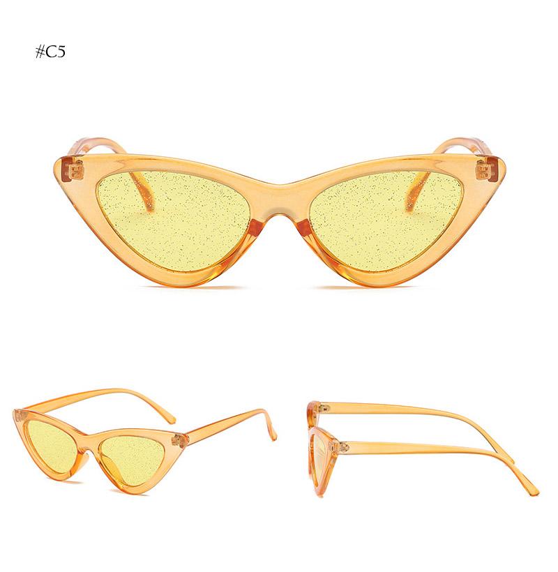 cat eye sunglasses (19)