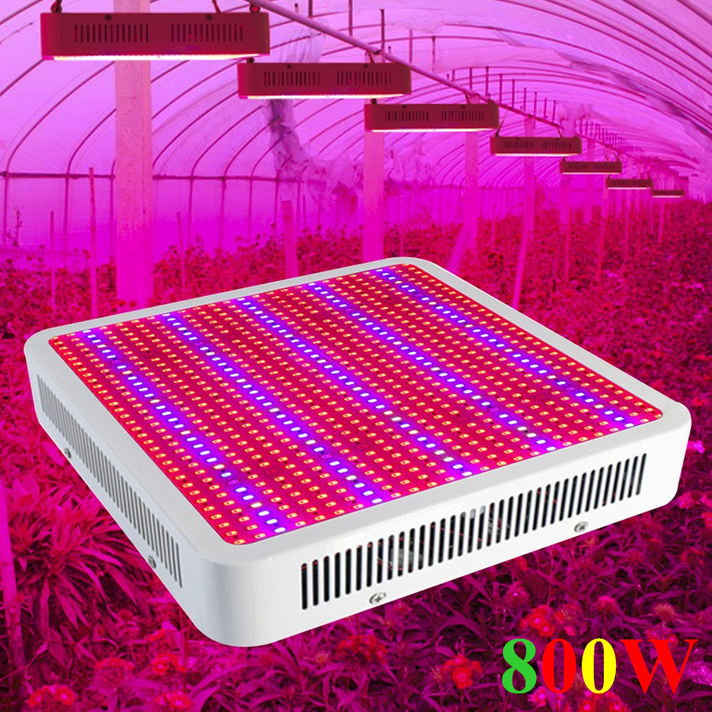 800W Full Spectrum LED Grow Light 800LEDs Panel Plant Lamp For Indoor Plants Growth Bloom Vegs Greenhouse Grow Tent Hydroponics