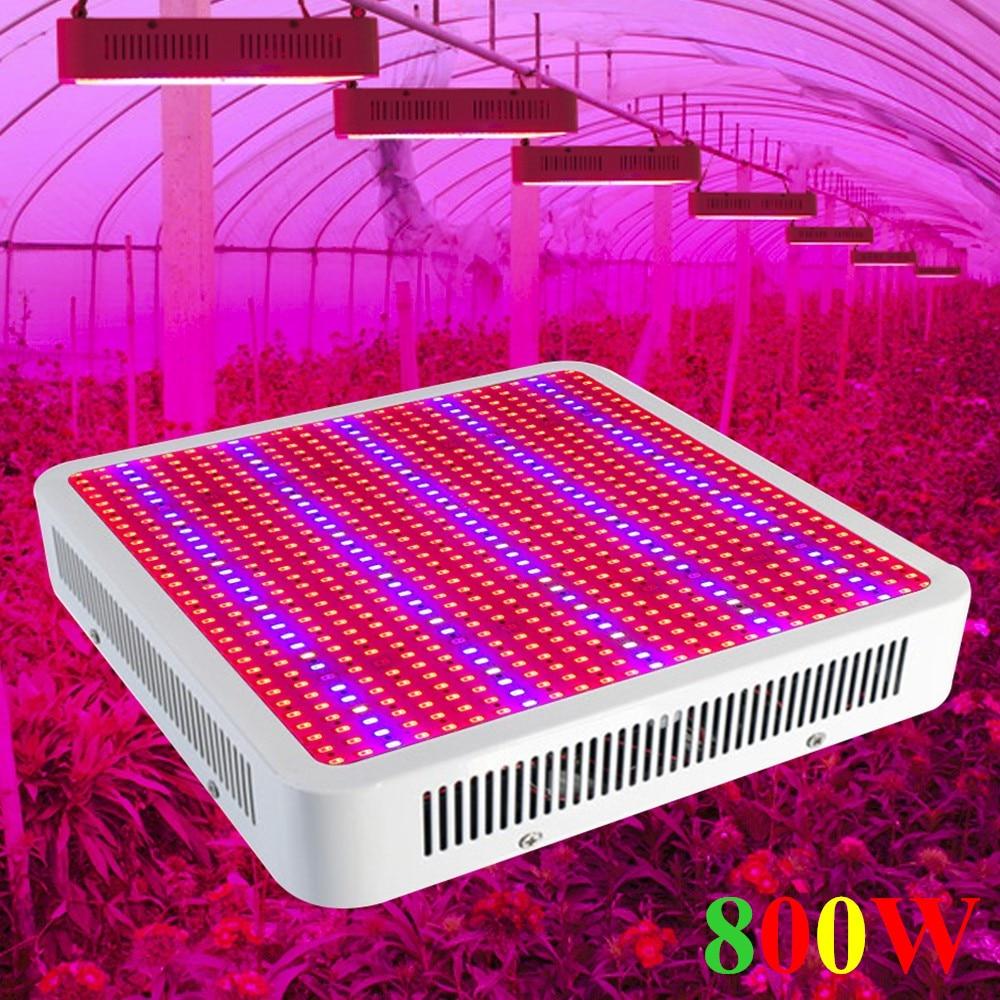 800W完全なスペクトルLEDは屋内植物のためのライト800LEDsのパネルの植物ランプを育てます