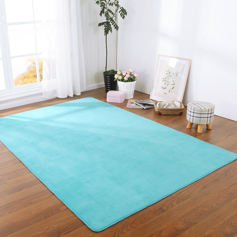 SunnyRain 1-Piece Shaggy Rugs And Carpet For Home Living Room Solid Color Area Rug For Bedroom Slip Resistant