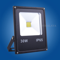 Excellent Quality 85 265V 10W 20W 30W 50W Led Flood Light Led Lamp Black Shell PIR