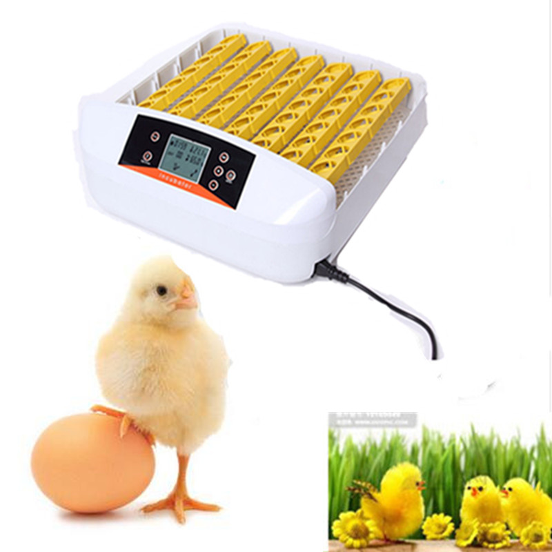 Full-automatic eggs incubator chicken brooder digital temperature control quail egg hatching machine china cheap hathery 12 egg incubator automatic brooder machines for hatching eggs