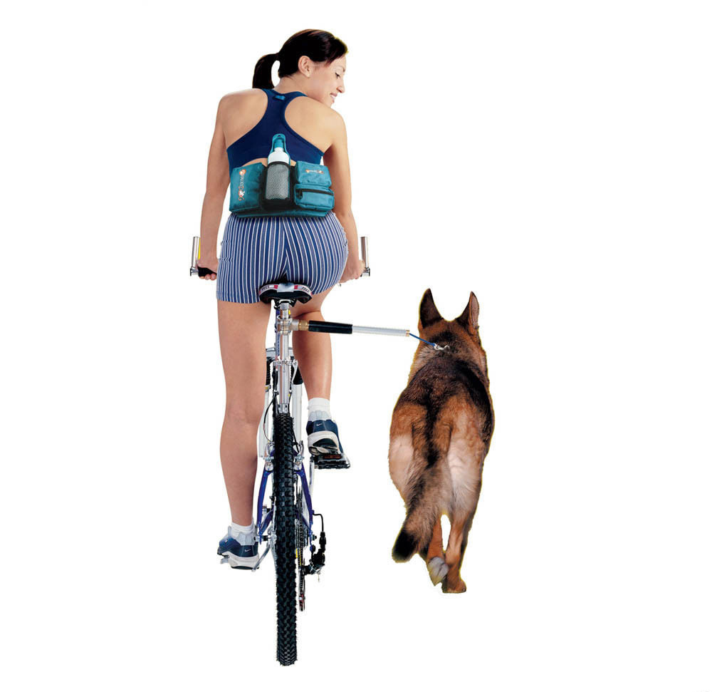 Laisse de chien mains libres ceinture de Traction de vélo pour animaux de compagnie